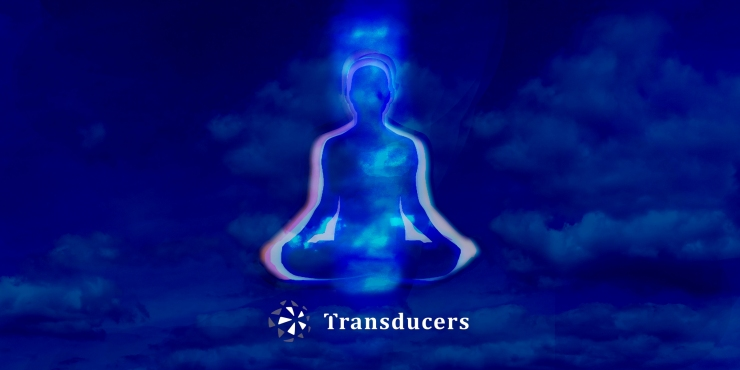 VisualTransducersFlyer2zu1LOGO